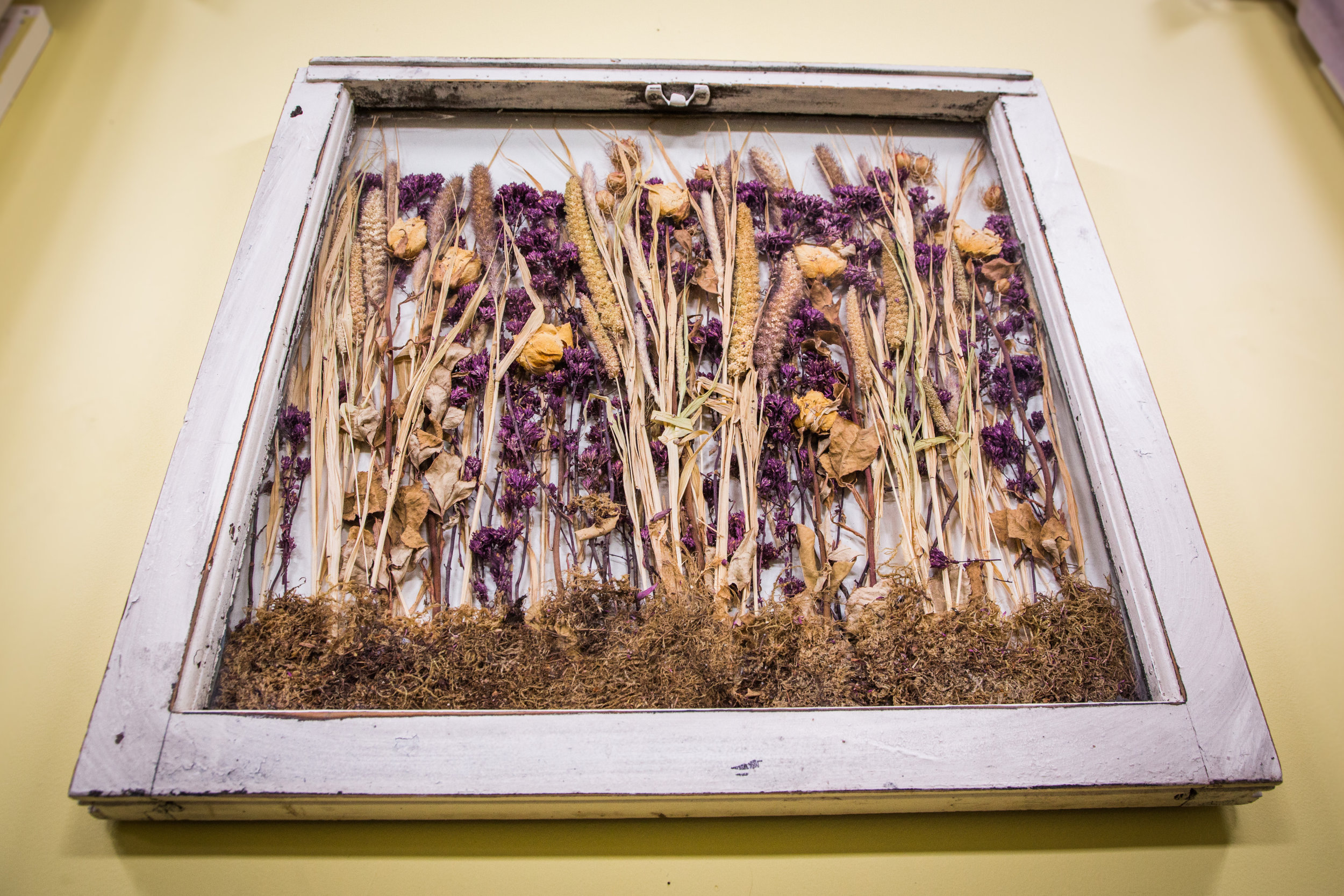 Drying And Preserving Flowers With Silica Gel Home Family