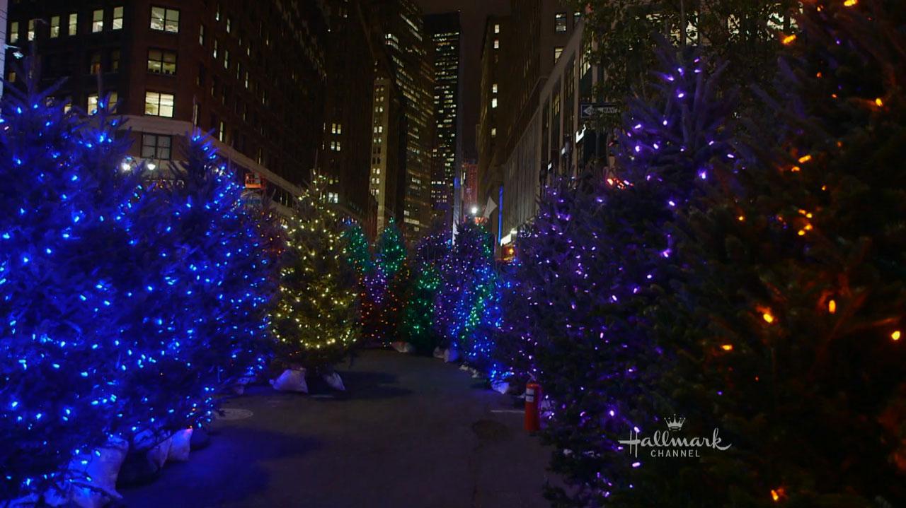 Hallmark Channel S World Record Setting Christmas Tree Maze Video