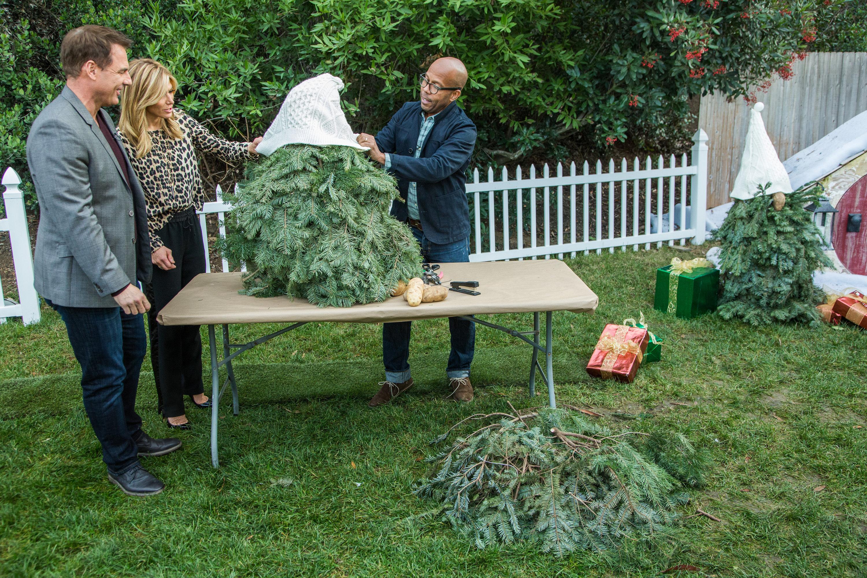 Gnome In Garden: DIY Christmas Tree Gnomes